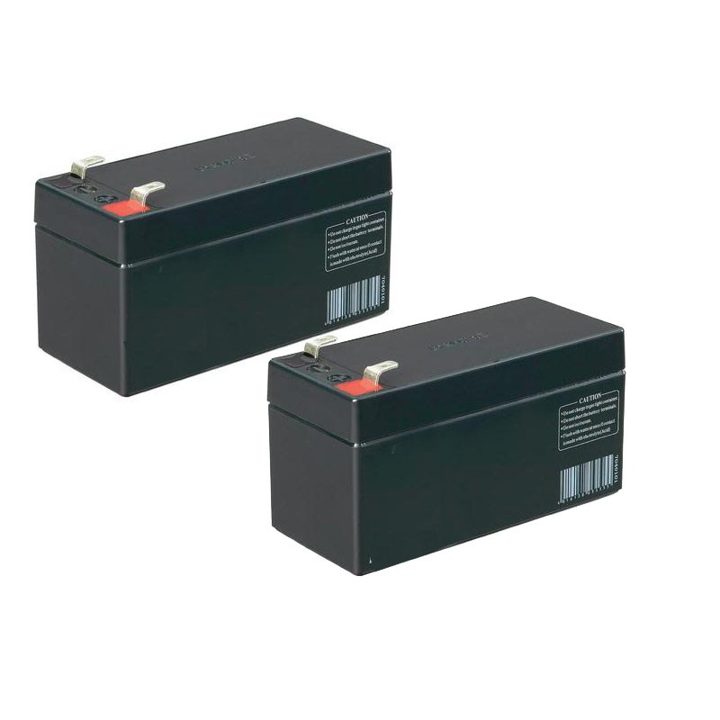 controleAccess_batterie-de-secours-12v